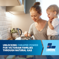 Liberal Nationals to lift natural gas ban to cut power bills and cut emissions – with no fracking